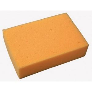 Standard Sponge
