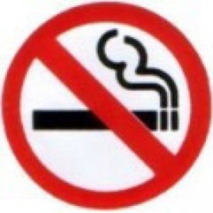 W4 No Smoking Stickers
